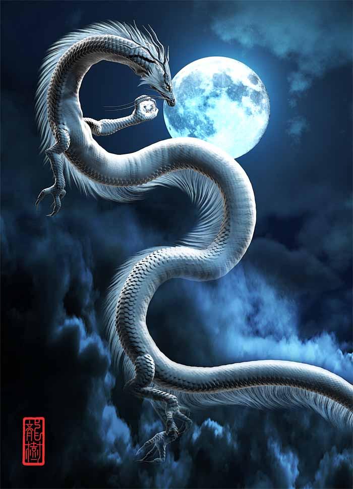 龍の絵「月と白龍」