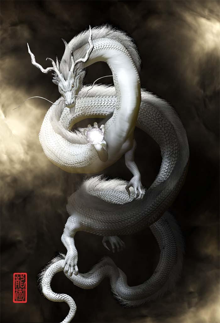 龍の絵「白龍1」