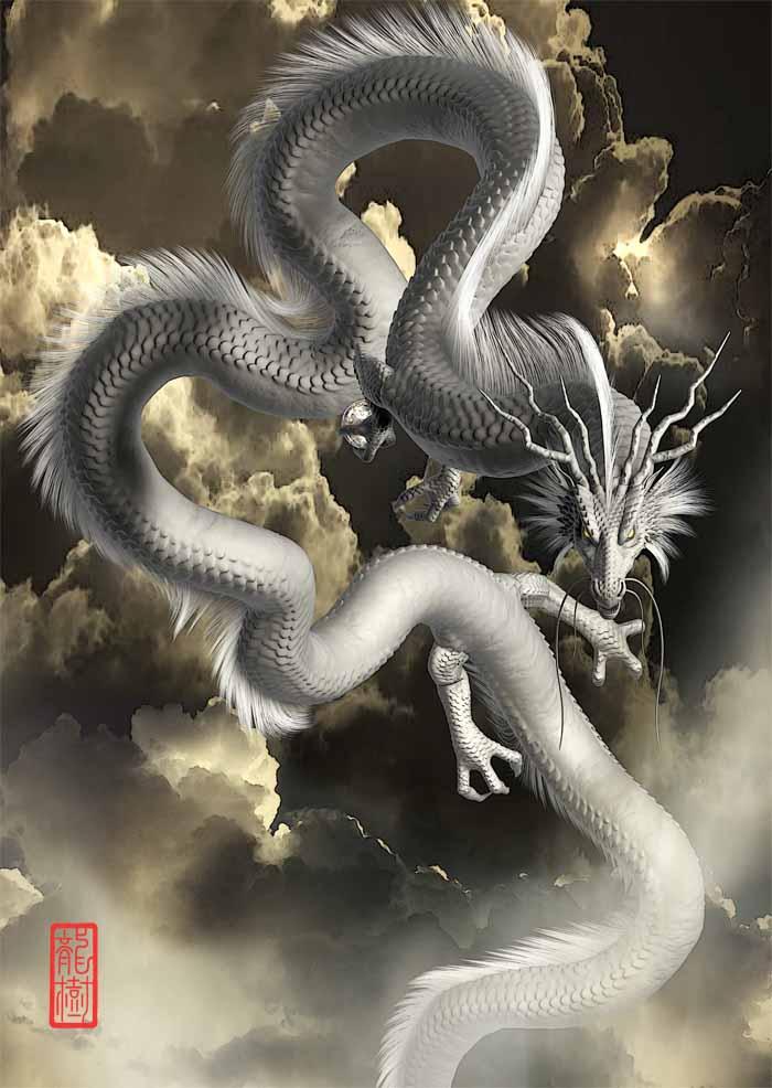 龍の絵「白龍2」