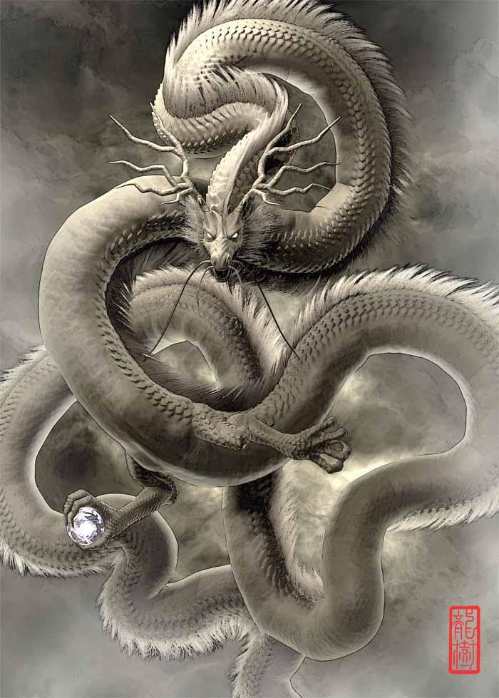 龍の絵「雲龍4」