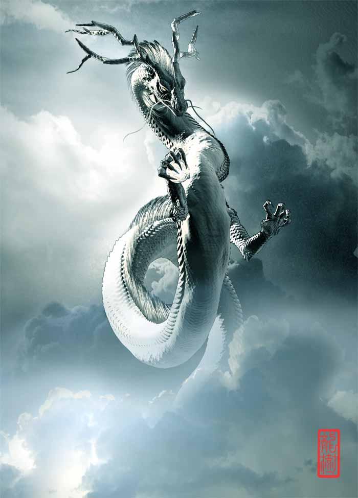 龍の絵「雲龍3」